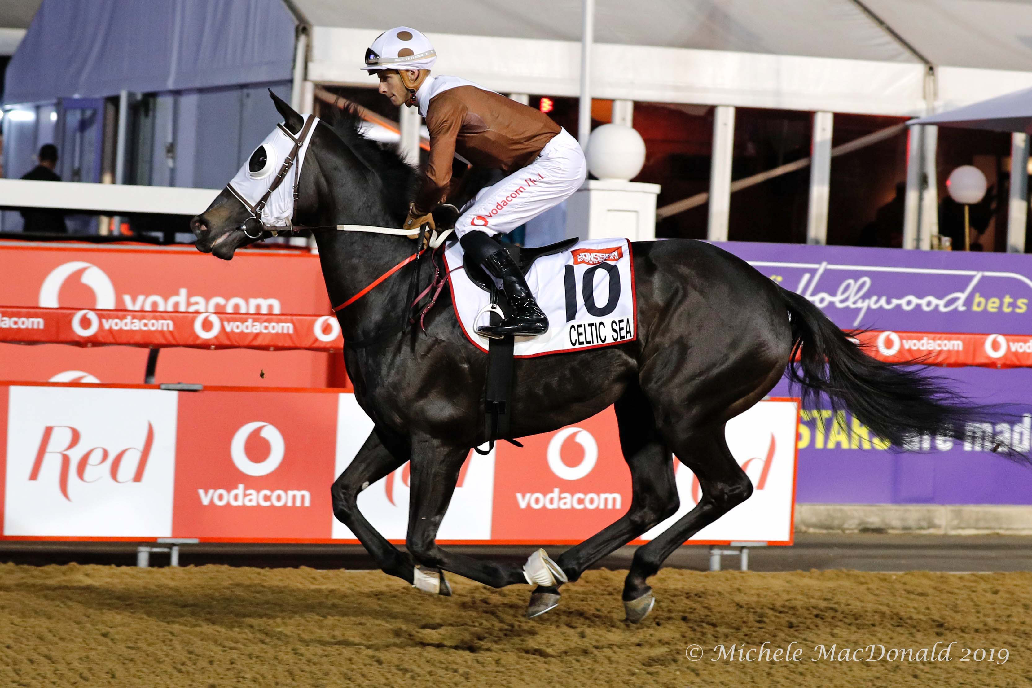 Grade 1 heroes: Lyle Hewitson on Celtic Sea in a warm-up gallop before winning the G1 Garden Province Stakes on this year's Durban July card. The Captain Al filly is trained by South Africa's multi-champion Sean Tarry and owned by Antony Beck, who also owns Gainesway Farm in Kentucky. Photo: Michele MacDonald