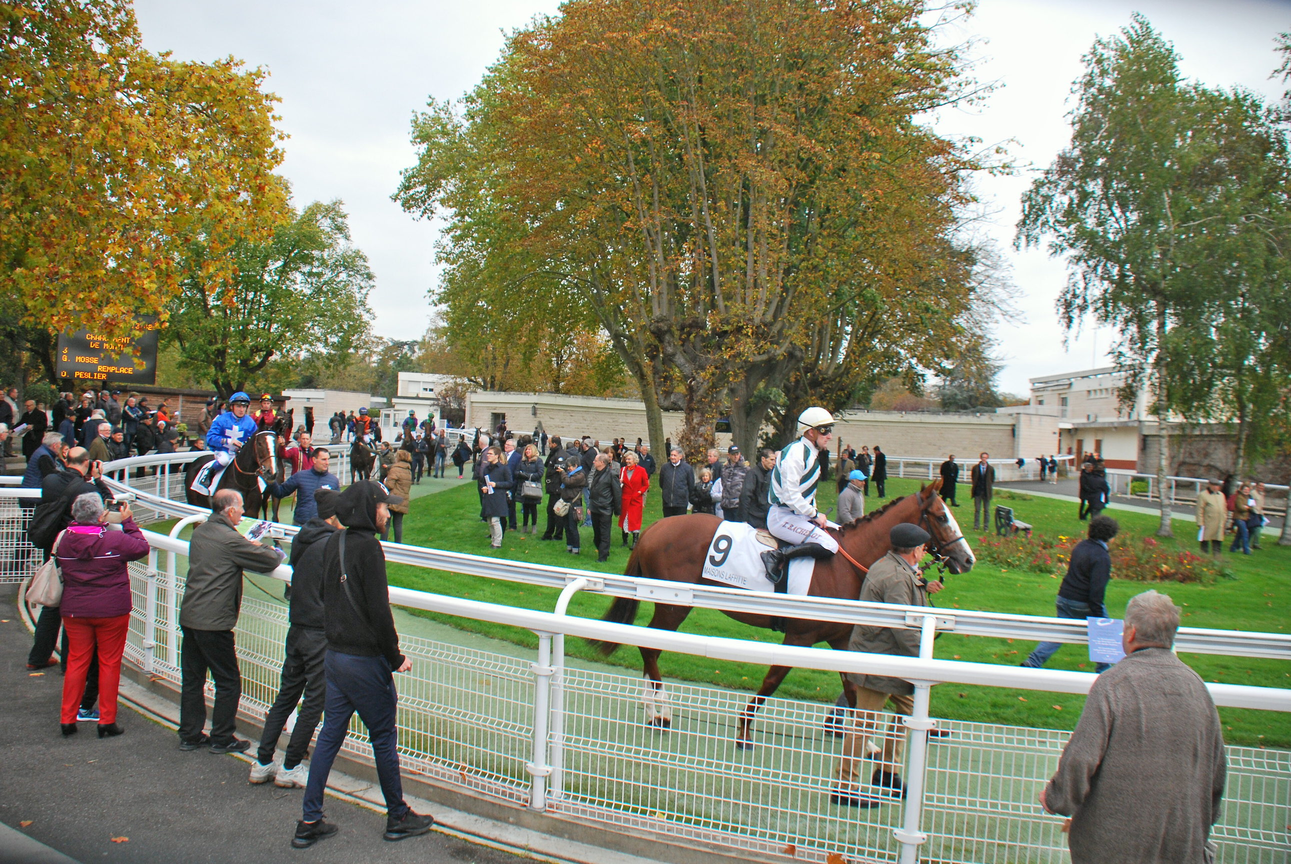 The parade ring at Maisons-Laffitte is one of the best features of the racecourse. Photo: John Gilmore