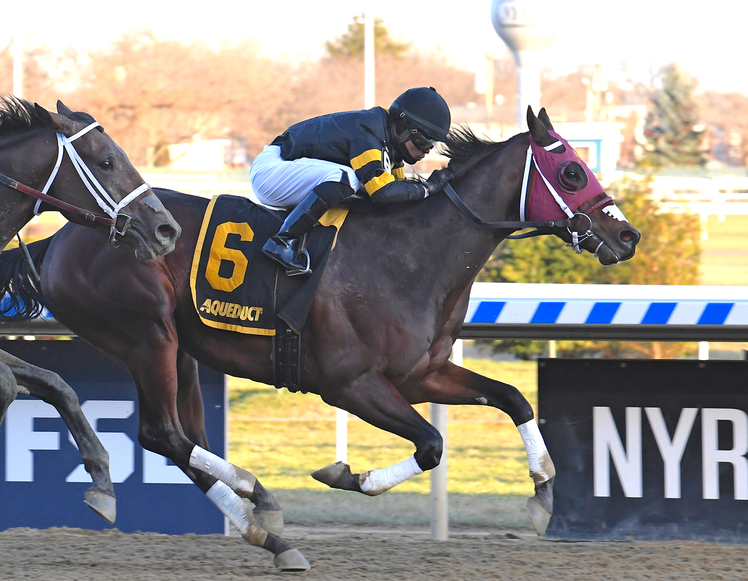 Derby possible: Shotski (Luis Saez) wins the G2 Remsen at Aqueduct last month for trainer Jerry O'Dwyer. Photo: Viola Jasko/NYRA.com