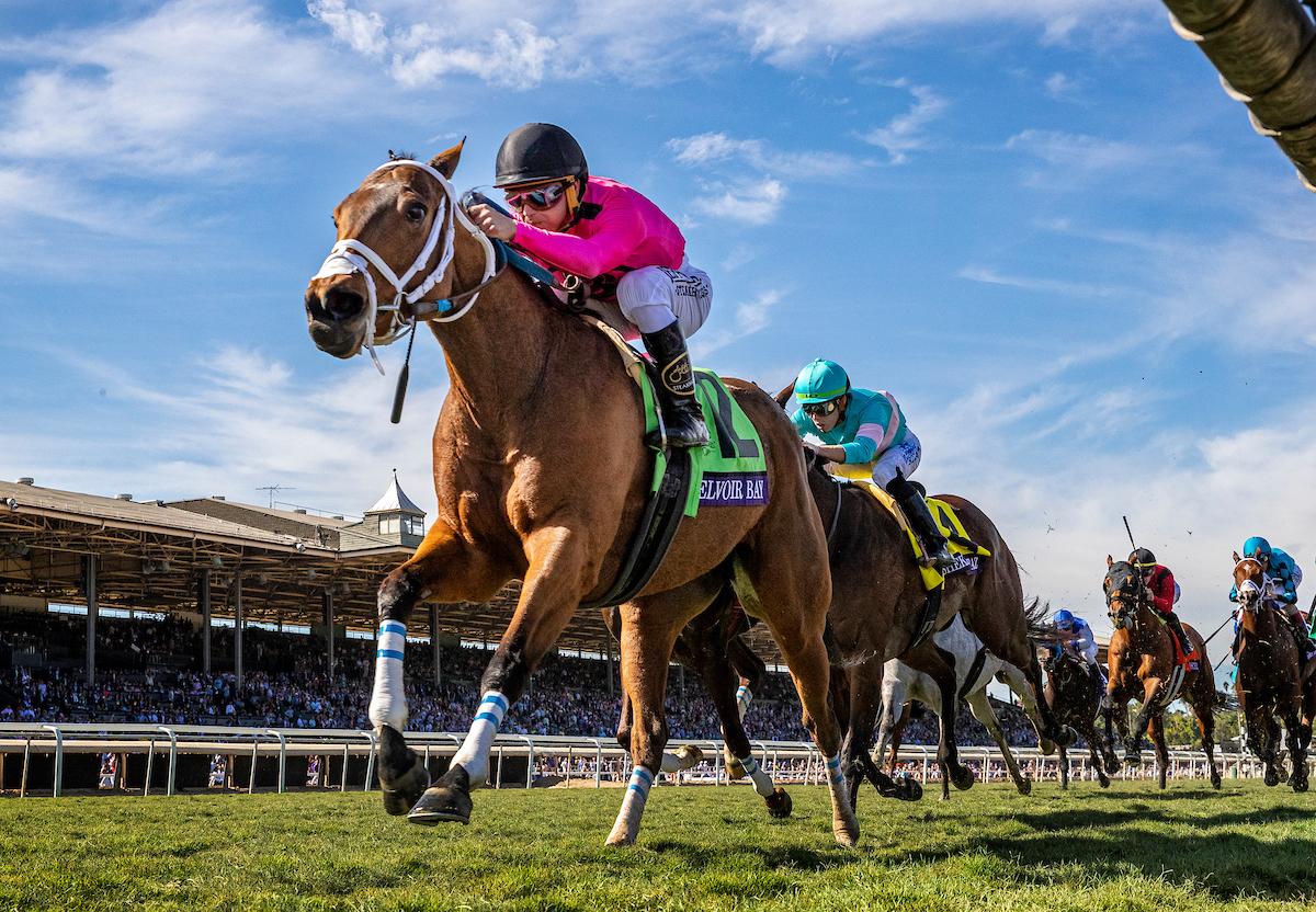 A star discovered: the British-bred Belvoir Bay, bought by Team Valor as a 2-year-old running in the UK, wins the Breeders' Cup Turf Sprint at Santa Anita last November. Photo: Alex Evers/Eclipse Sportswire/CSM/Breeders' Cup