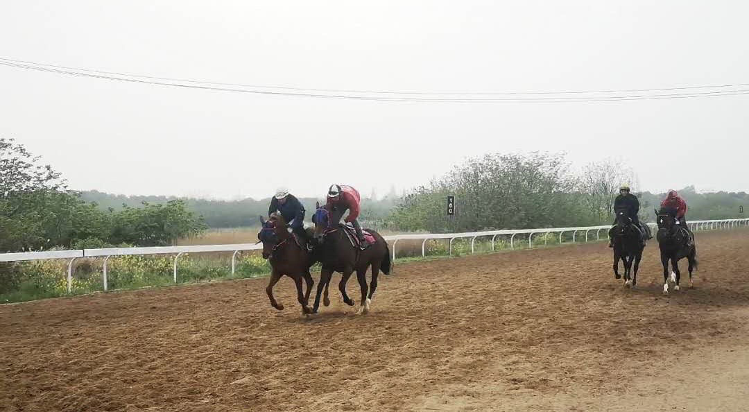A gallop at the training centre in Wuhan